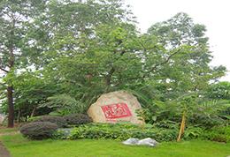 广州 · 大学城大学时光